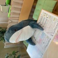 ikeaサメ+パーテーション